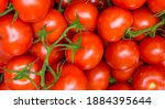 Closeup   Red Tomatoes...