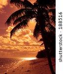Orange Tropics - stock photo