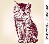 Cat    Hand Drawn Vector...