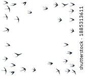flying swallow birds...   Shutterstock .eps vector #1885313611