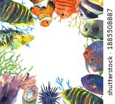 colorful exotic tropical fishes ... | Shutterstock . vector #1885508887