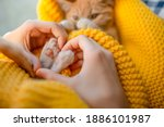 The Girl Hand Make Heart Shape...