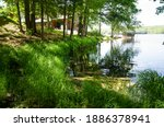 Water And Shoreline Of Lake