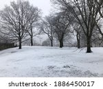 Trees In Snow Covered Park In...