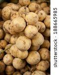 lansium demesticum corr. or... | Shutterstock . vector #188665985