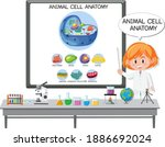 young scientist explaining the... | Shutterstock .eps vector #1886692024