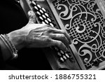 Hands Playing An Accordion...