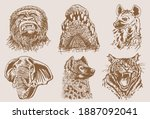 graphical sepia set of wild... | Shutterstock .eps vector #1887092041