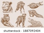 graphical sepia set of wild... | Shutterstock .eps vector #1887092404