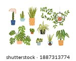 collection of different potted... | Shutterstock .eps vector #1887313774
