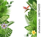 tropical background | Shutterstock .eps vector #188734355