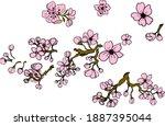 branch of sakura flower vector... | Shutterstock .eps vector #1887395044