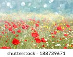 poppies field and bokeh lights | Shutterstock . vector #188739671