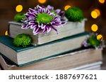 Old Books And Chrysanthemum...