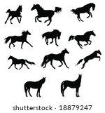 horses silhouettes 2   Shutterstock .eps vector #18879247