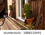 Village  Flowerpots On The...