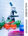 Chemical Laboratory Of The Food ...