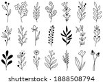 collection forest fern... | Shutterstock .eps vector #1888508794