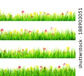 green grass with daisy flowers... | Shutterstock .eps vector #188903051