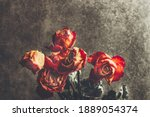 Dried Orange Roses. Bunch Of...