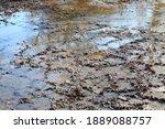 wet flooded muddy soil texture after rain