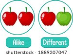 opposite words with alike and...   Shutterstock .eps vector #1889207047