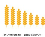 outline wheat icon or wheat... | Shutterstock .eps vector #1889685904