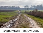 Muddy Road Through Green Fields ...