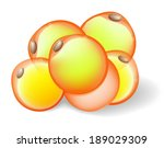 fat cells from white adipose... | Shutterstock .eps vector #189029309
