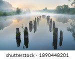 Misty Morning On The River....