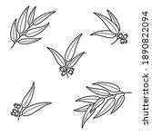 eucalyptus set. collection icon ... | Shutterstock .eps vector #1890822094
