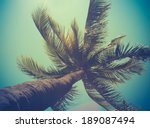 Stock photo retro filtered single palm tree in hawaii 189087494