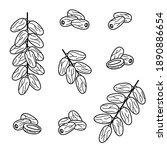 dates fruit set. collection... | Shutterstock .eps vector #1890886654