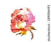 painted rose for greeting cards ... | Shutterstock . vector #189096491