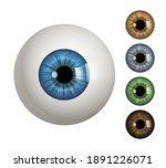 human eyeball. people... | Shutterstock .eps vector #1891226071