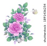 hand drawn rose branch with... | Shutterstock .eps vector #1891436254