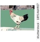 Garden Rooster Graphic Vector...