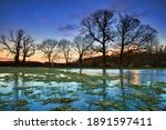 Winter Landscape Of Trees And A ...