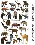 Prehistoric Mammals 3d illustration - A collection of some of the better known mammals that lived during the Cenozoic Era.