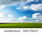 Meadow With Green Grass And...