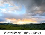 Field In Yellowstone With...