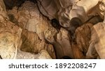 Stalactite  The Caves In The...