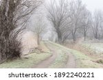 Dirt Road In Winter. There Are...