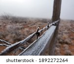 Frost Covered Barbed Wire Fence ...