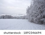 winter trees in mountains...   Shutterstock . vector #1892346694