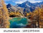 Autumn Turquoise Lake In...