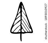 christmas tree doodle...   Shutterstock .eps vector #1893010927
