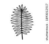 trachycarpus leaf stylized...   Shutterstock .eps vector #1893012517