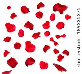 Stock photo beautiful red rose petals isolated on white 189335375