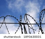 Barbed Wire On The Background...